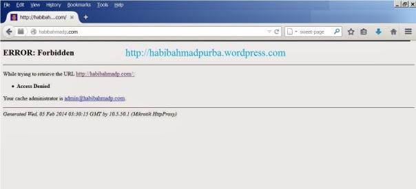 web proxy_4