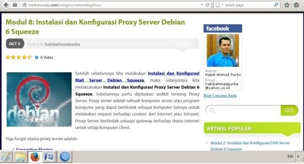 web proxy_3